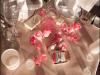 marco_beach_ocean_resort-john_parker_band_weddings_119