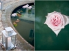 addison_boca_raton_florida_wedding-john_parker_band_36